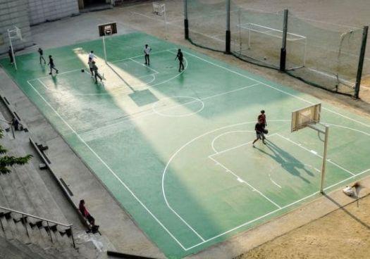 Basket Field bola