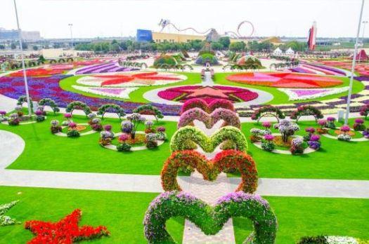 Beautiful cute Garden