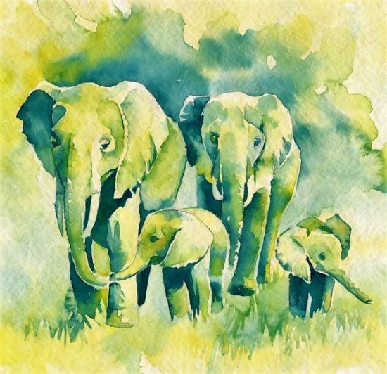 Elephant drawing gajah