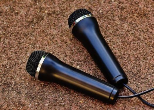 two microphone