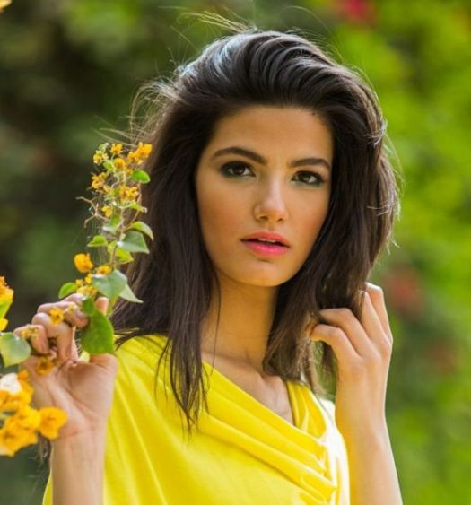 Tara Emad, Arab beauty